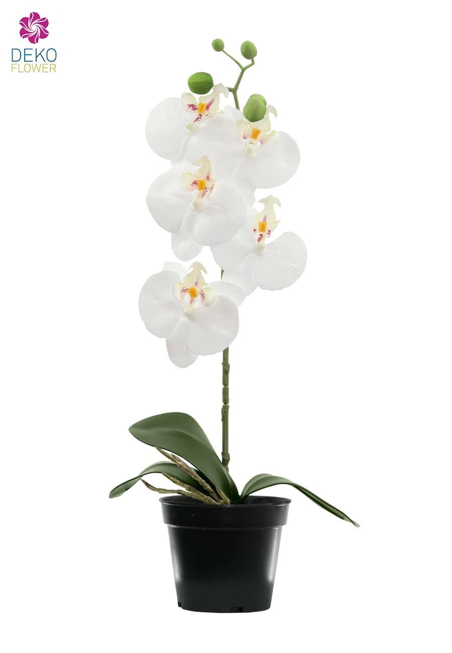 Künstliche Orchidee weiß 40 cm
