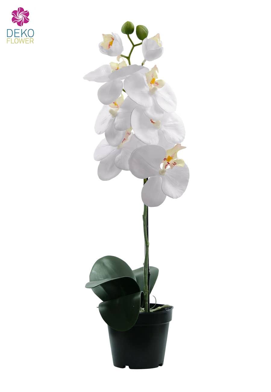 Künstliche Orchidee weiß 40 cm 6 Blüten