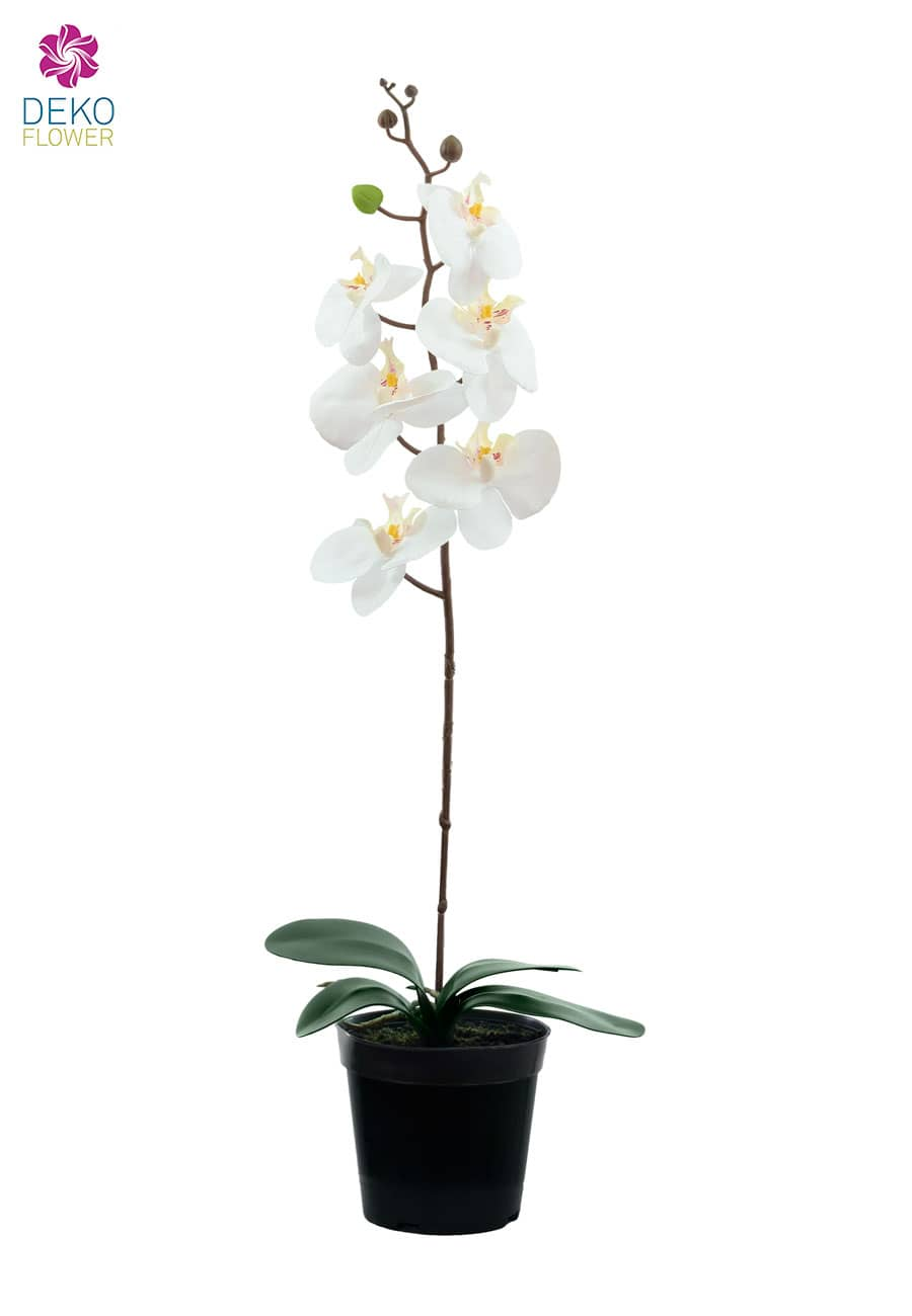 Kunstorchidee weiß 65 cm