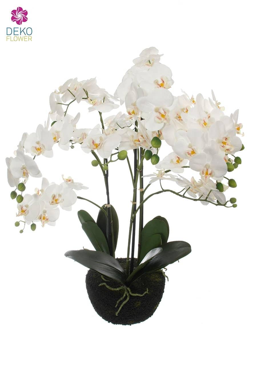 k nstliche orchidee wei 70 cm. Black Bedroom Furniture Sets. Home Design Ideas