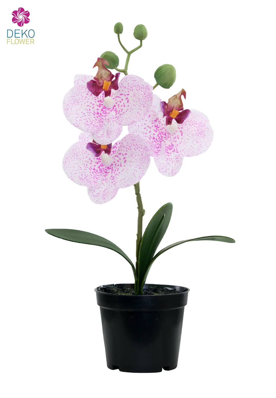 k nstliche orchidee wei rosa 27 cm. Black Bedroom Furniture Sets. Home Design Ideas