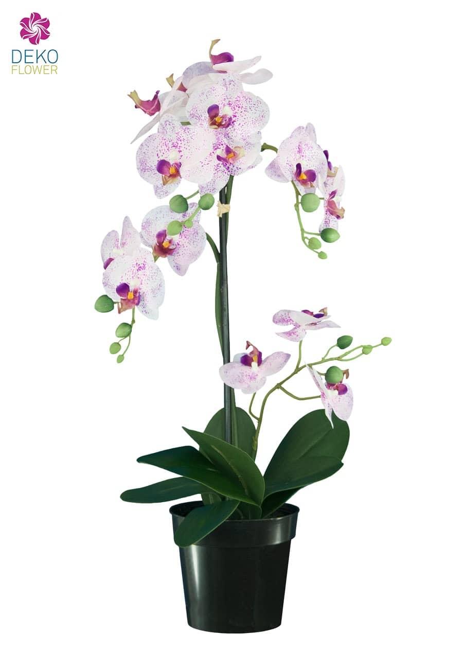 Künstliche Orchidee weiß rosa 67 cm