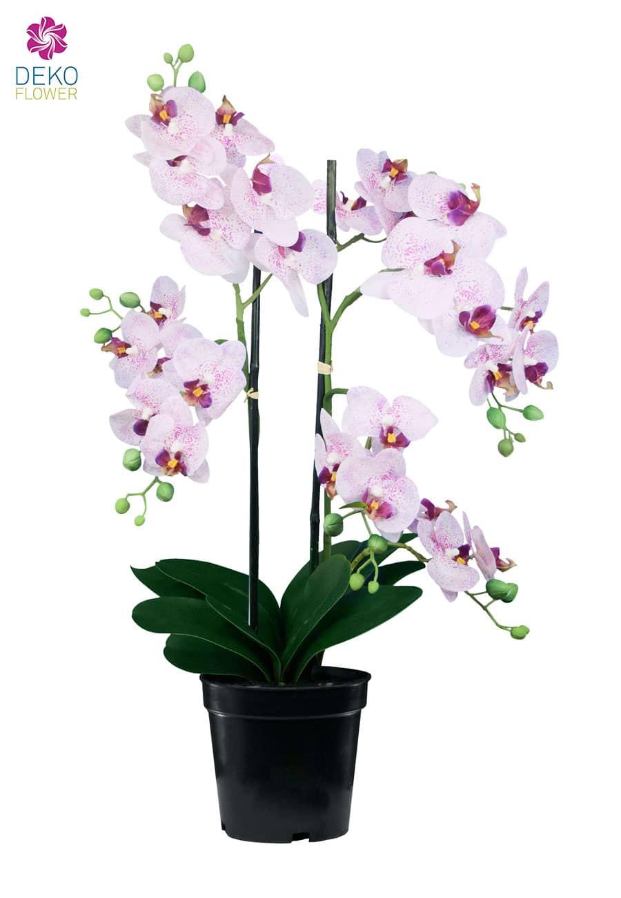 Künstliche Orchidee weiß rosa 76 cm