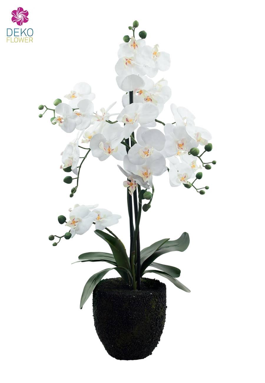 kunst orchidee wei 78 cm. Black Bedroom Furniture Sets. Home Design Ideas