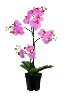 kunstorchideen k nstliche orchideen im topf. Black Bedroom Furniture Sets. Home Design Ideas