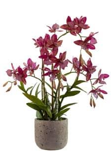 Künstliche Orchidee »Real Touch« 51 cm lila