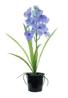 Künstliche Orchidee Vanda blau 60 cm