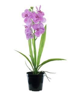 Künstliche Orchidee Vanda lavendel 60 cm