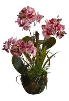 Künstliche Orchidee weinrot 63 cm an Baumwurzel