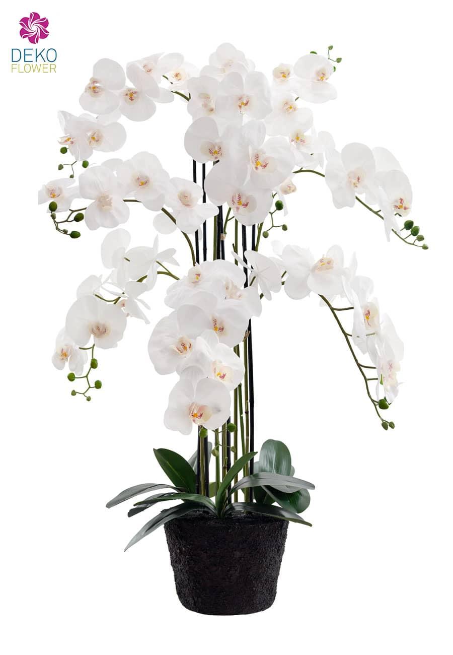 Künstliche Orchidee weiß 125 cm