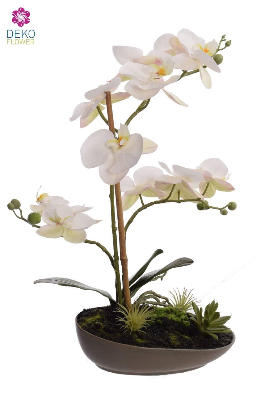 Künstliche Orchidee weiß in Schale 40 cm