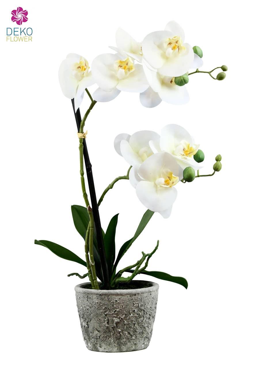 Kunstorchidee weiß 50 cm im Steintopf