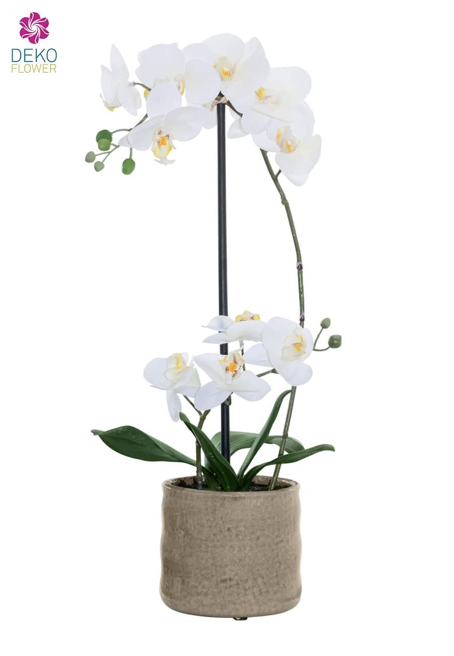 Künstliche Orchidee weiß 53 cm in Keramikschale