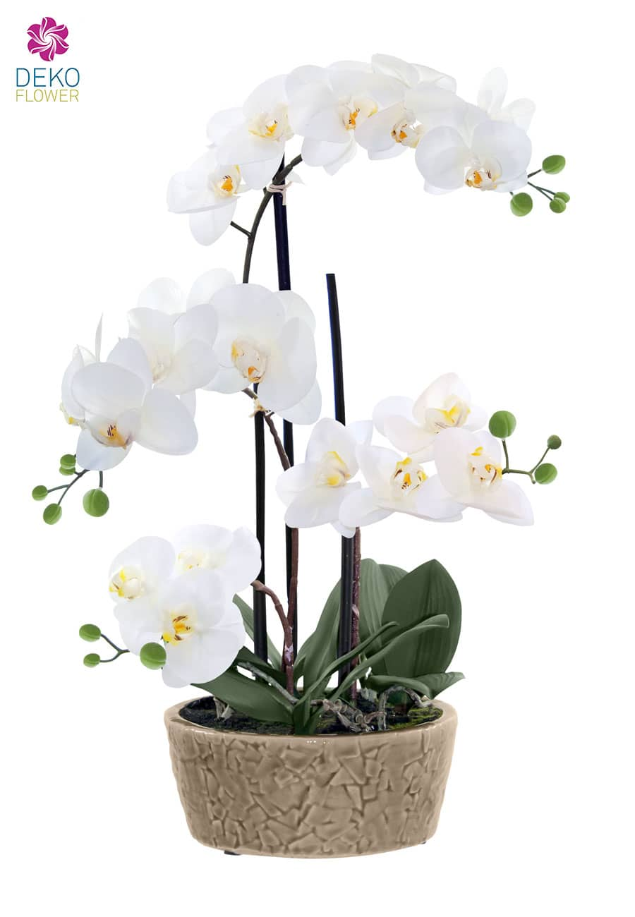 Kunst Orchidee weiß 53 cm in Deko Schale