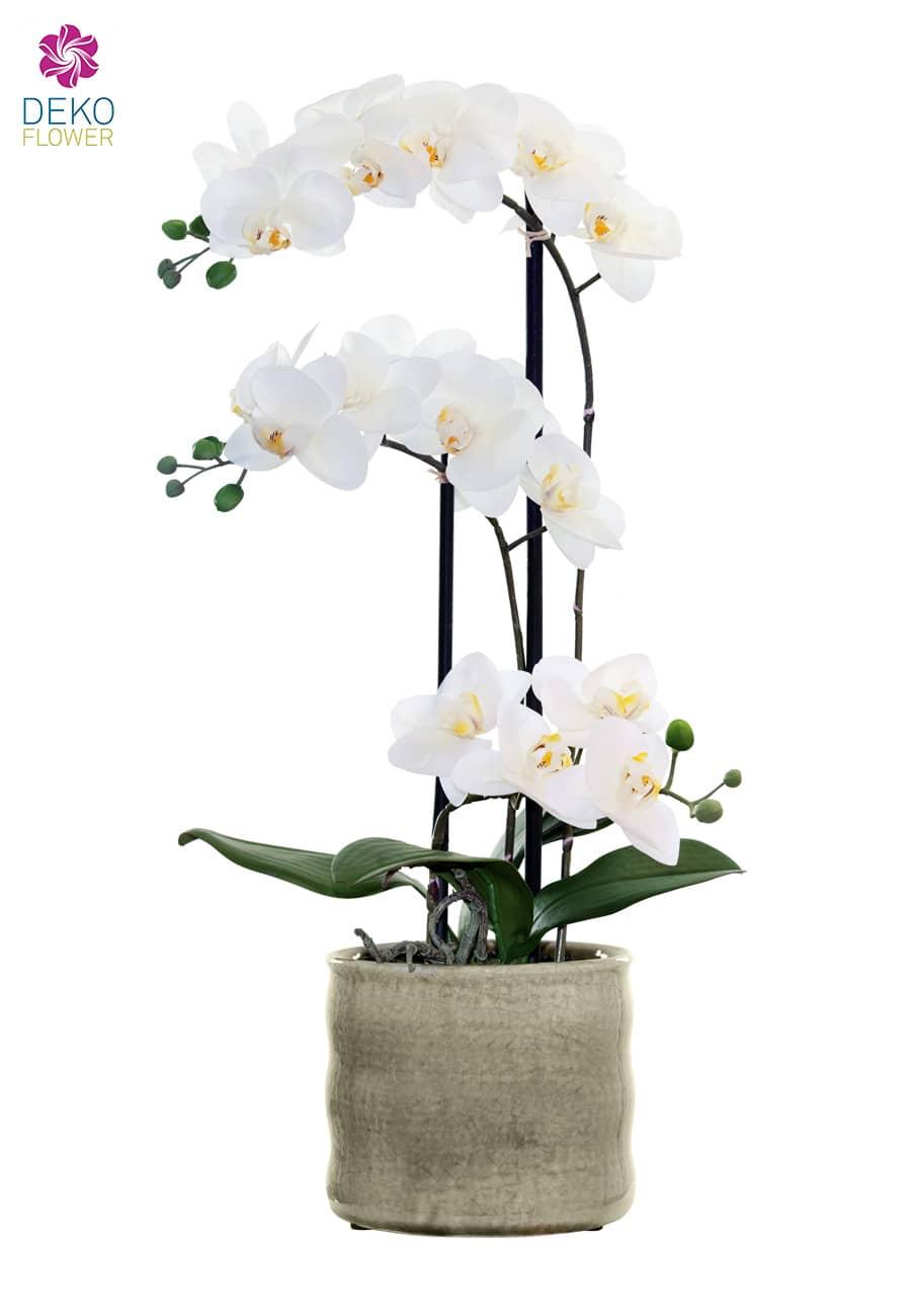 Künstliche Orchidee weiß 58 cm in Keramikschale