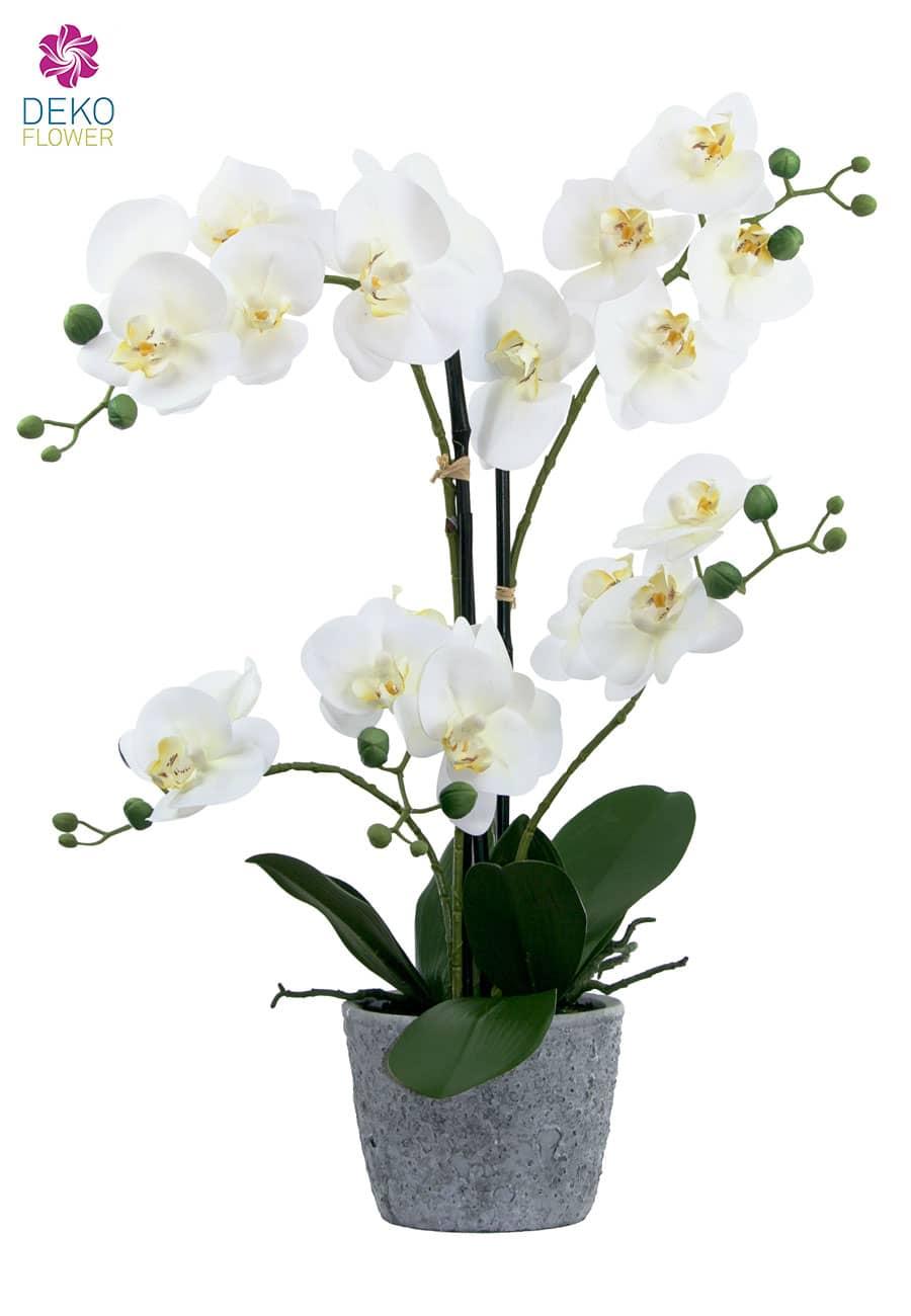 orchideen kunstpflanze 60 cm wei. Black Bedroom Furniture Sets. Home Design Ideas