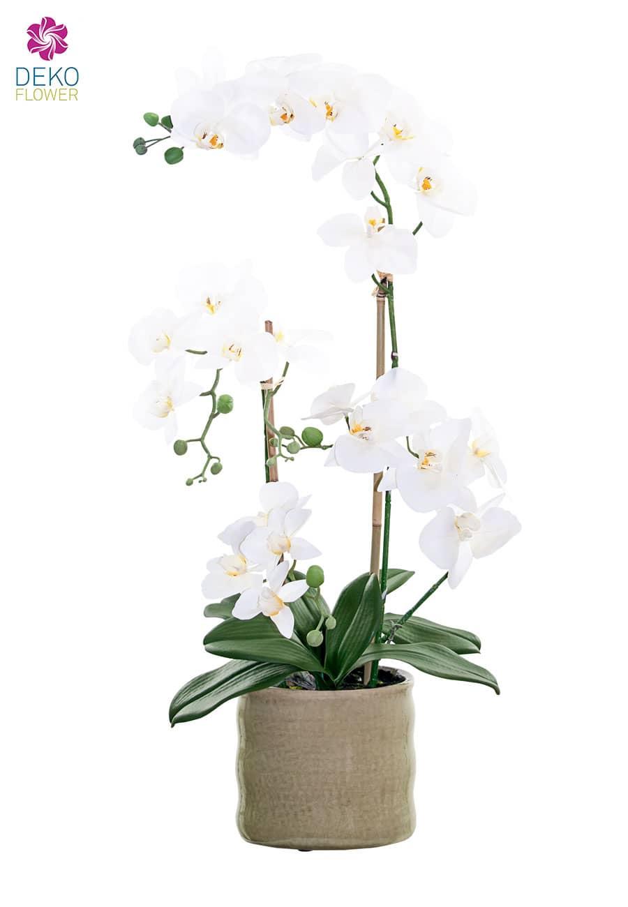Kunstorchidee weiß 70 cm im Keramiktopf
