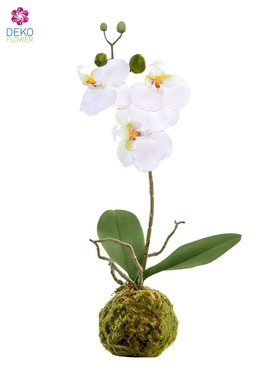 Künstliche Orchidee im Erdballen 38 cm weiß