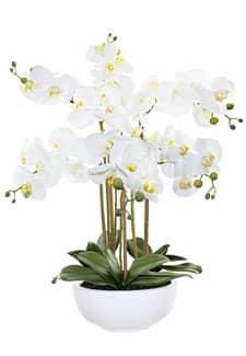 Künstliche Orchidee weiß »Real Touch« 72 cm