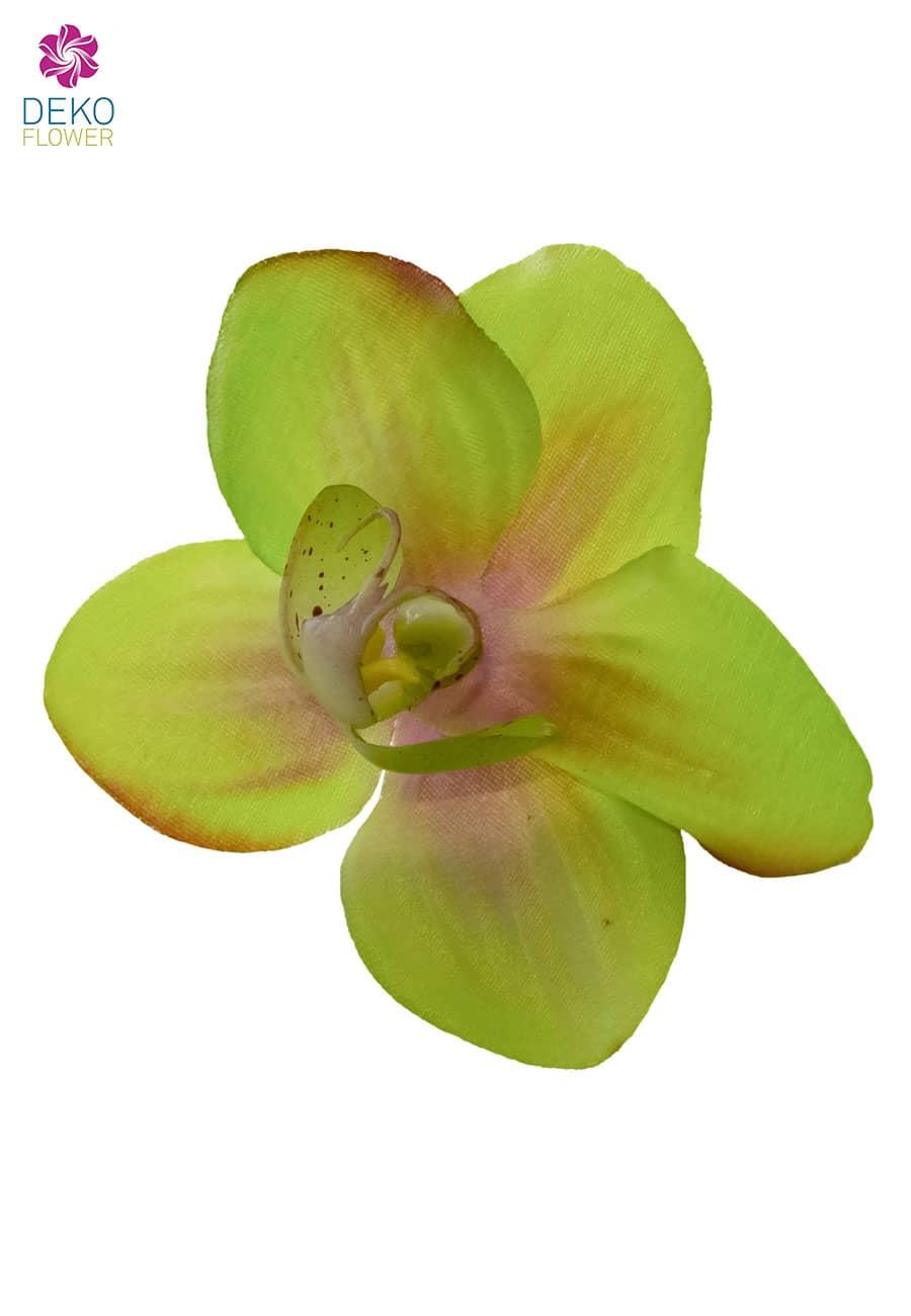 Orchideenblüten grün 7 cm im Set