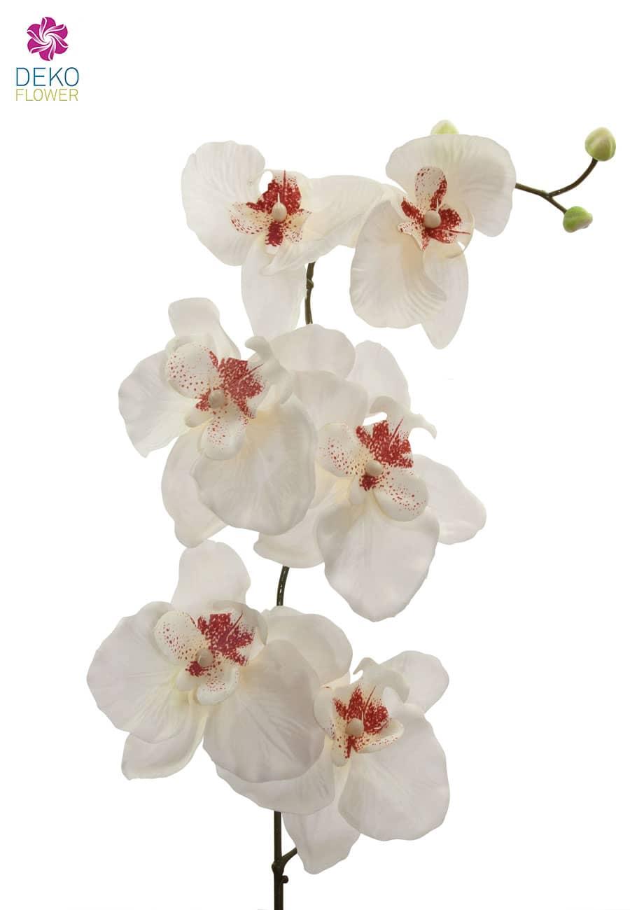 Künstliche Orchideenzweige creme 77 cm 3er-Pack
