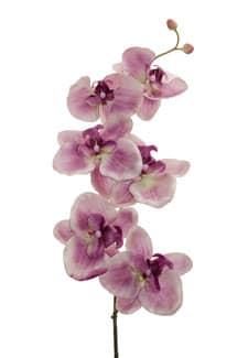 Künstliche Orchideenzweige creme violett 77 cm 3er Pack