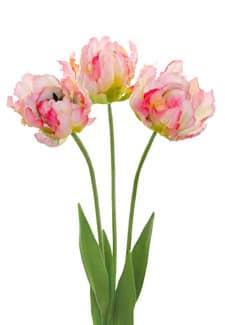 Künstliche Papageien Tulpen 3er Pack 61 cm rosa