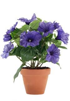 Künstliche Petunien Blumen violett im Topf 30 cm