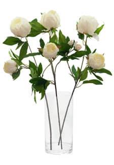 Künstliche Pfingstrosen Blumen creme 72 cm 3er Set