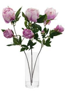 Künstliche Pfingstrosen Blumen lila 72 cm 3er Set
