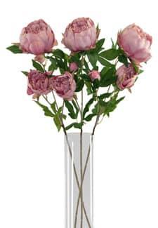Künstliche Pfingstrosen zart-rosa 72cm 3er-Set