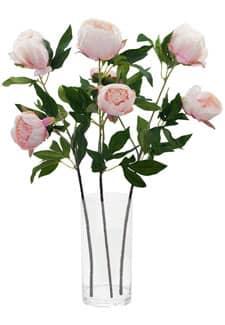 Künstliche Pfingstrosen rosa 72cm, 3er-Set