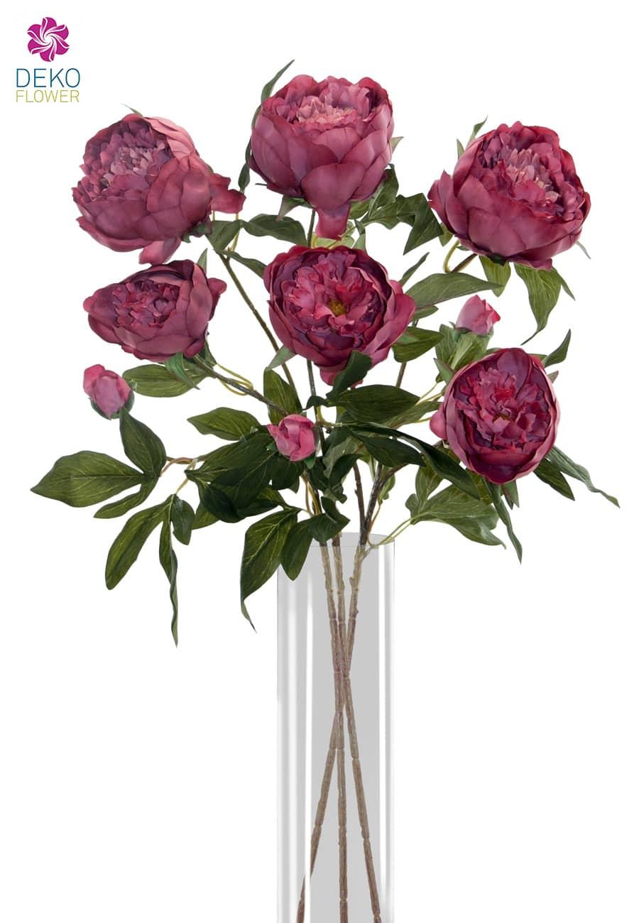 Pfingstrosen Kunstblumen weinrot 72cm 3er-Set
