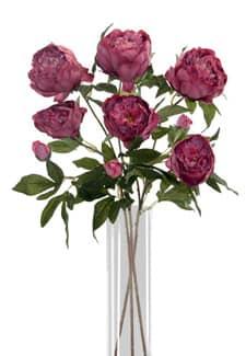 Pfingstrosen Kunstblumen weinrot 72 cm 3er-Set