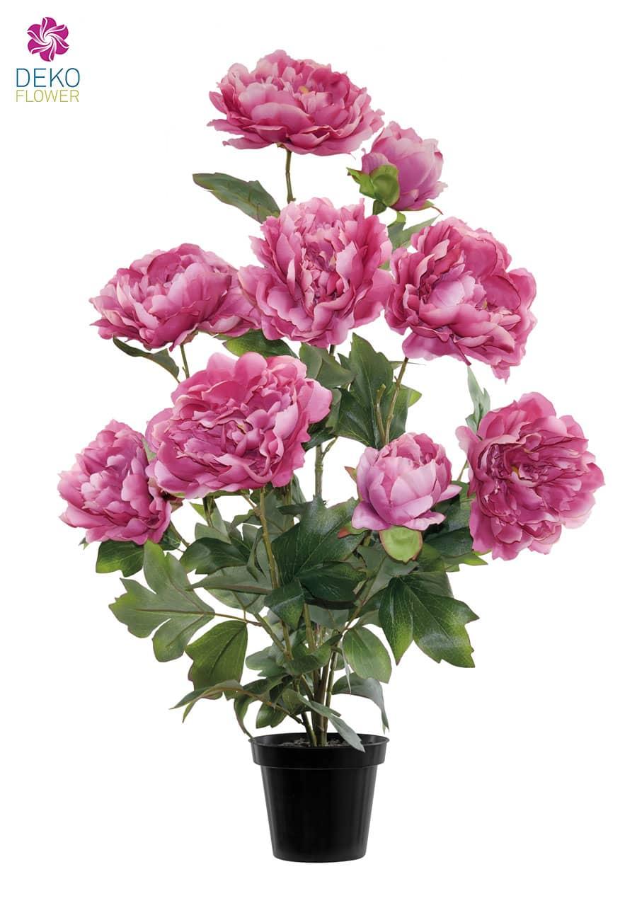 Künstliche Pfingstrosen pink 70 cm