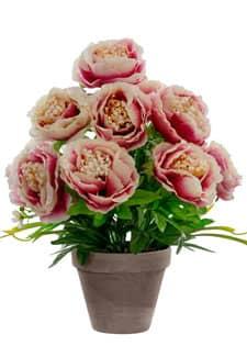 Künstliche Pfingstrosen pink apricot 46 cm