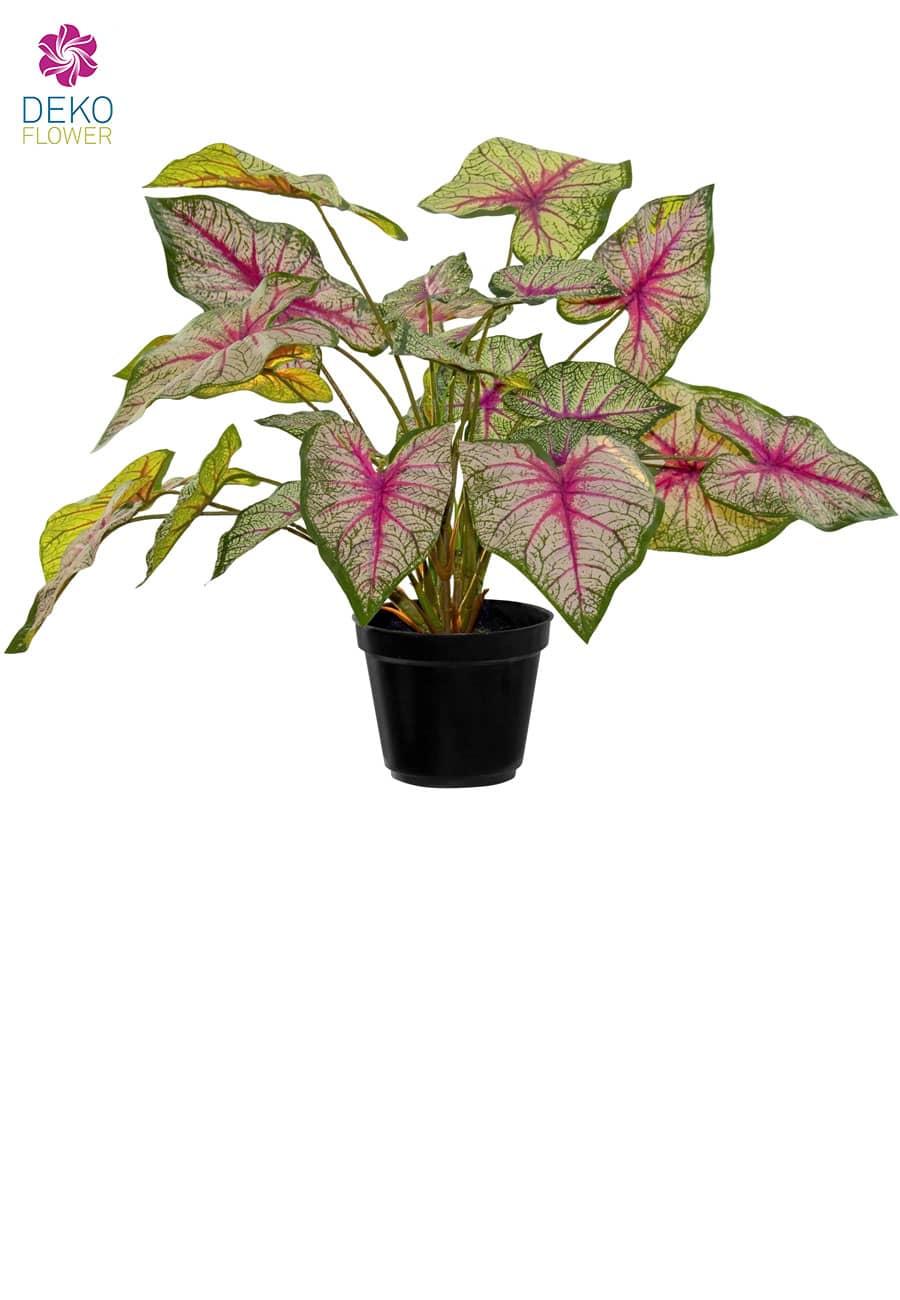 Kunstpflanze »Caladium Bi-Color« grün rosa 34 cm