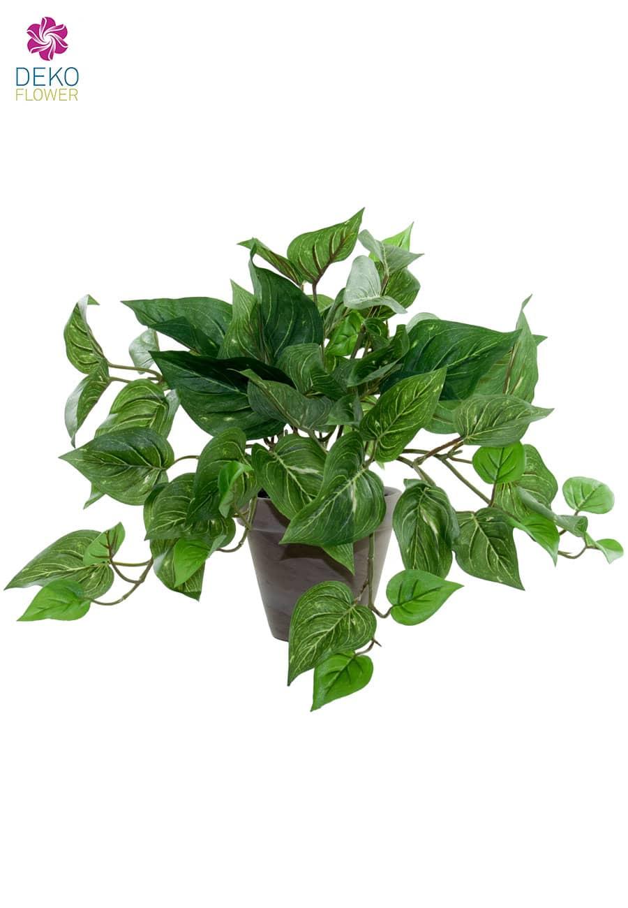 Künstliche Pothos Rank Pflanze im Topf 29 cm