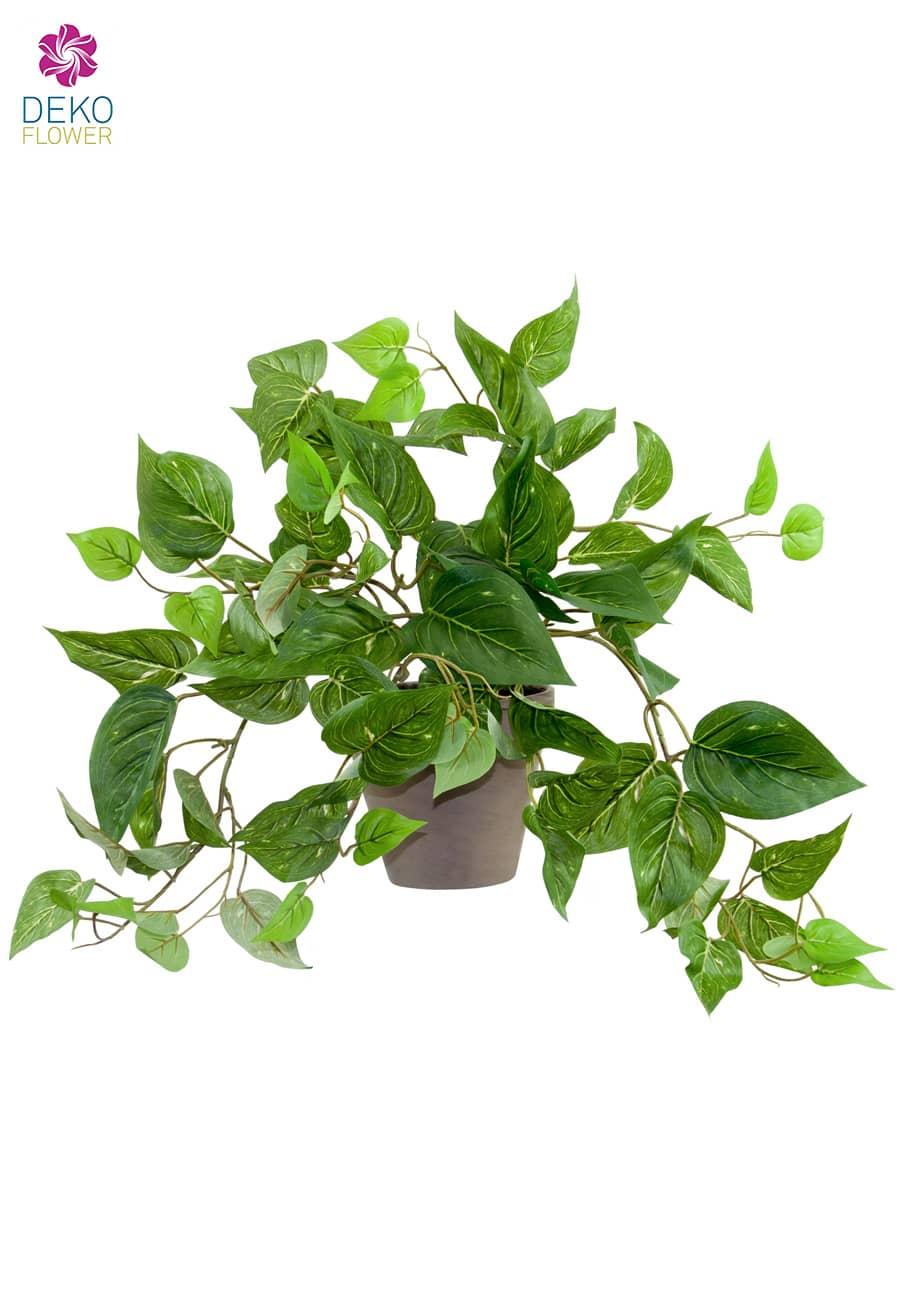 Pothos Kunstpflanze grün im Tontopf 35cm/55cm
