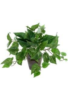 Pothos Kunstpflanze grün im Tontopf 29cm