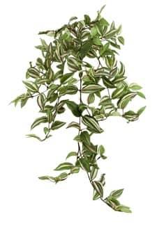 Künstliche Tradeskantia Rank Pflanze 70 cm