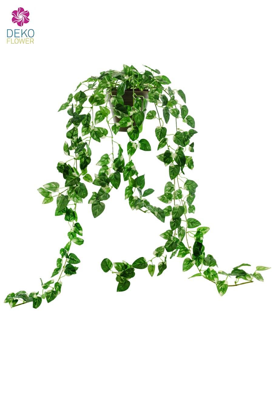 Künstliche Rankenpflanze Pothos 70 cm