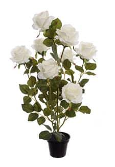 Künstliche Rosen im Topf 70 cm weiß