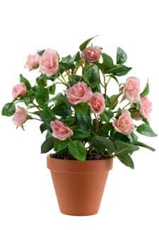 kunstpflanzen k nstliche rosenb sche im topf. Black Bedroom Furniture Sets. Home Design Ideas