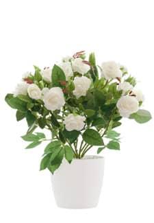 Künstliche Rosen weiß 27cm getopft