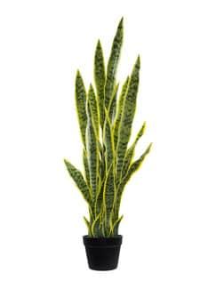 Künstliche Sansevieria 99 cm gelb grün