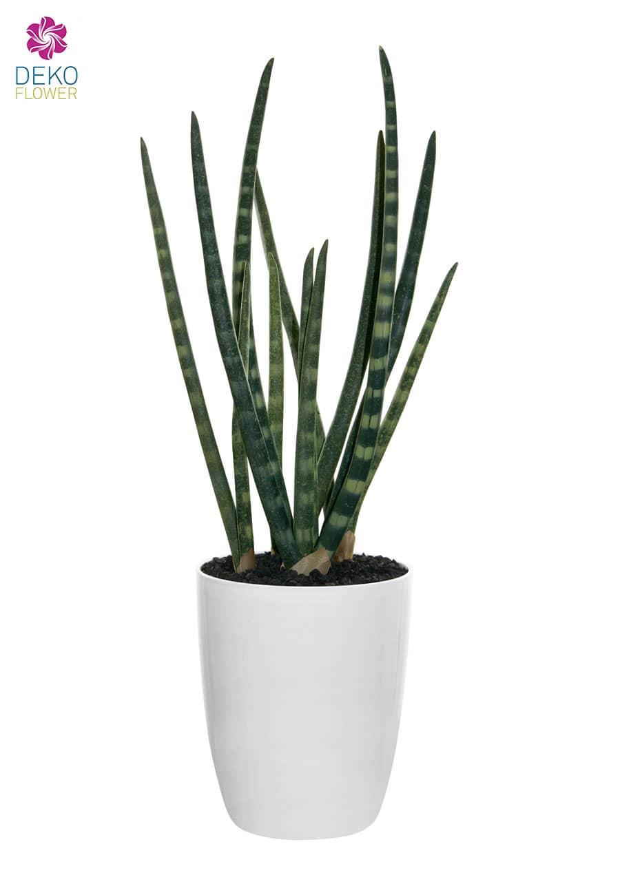 Künstliche Sansevieria Cylindrica Topfpflanze 55 cm