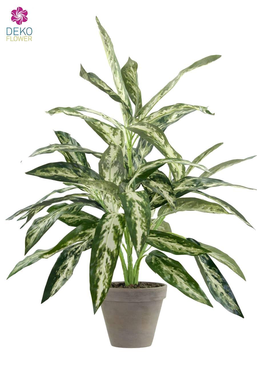 Silver Queen Kunstpflanze im Tontopf 60 cm grün grau