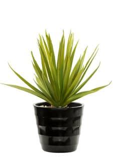 Agave Sukkulent Kunstpflanze getopft 23 cm