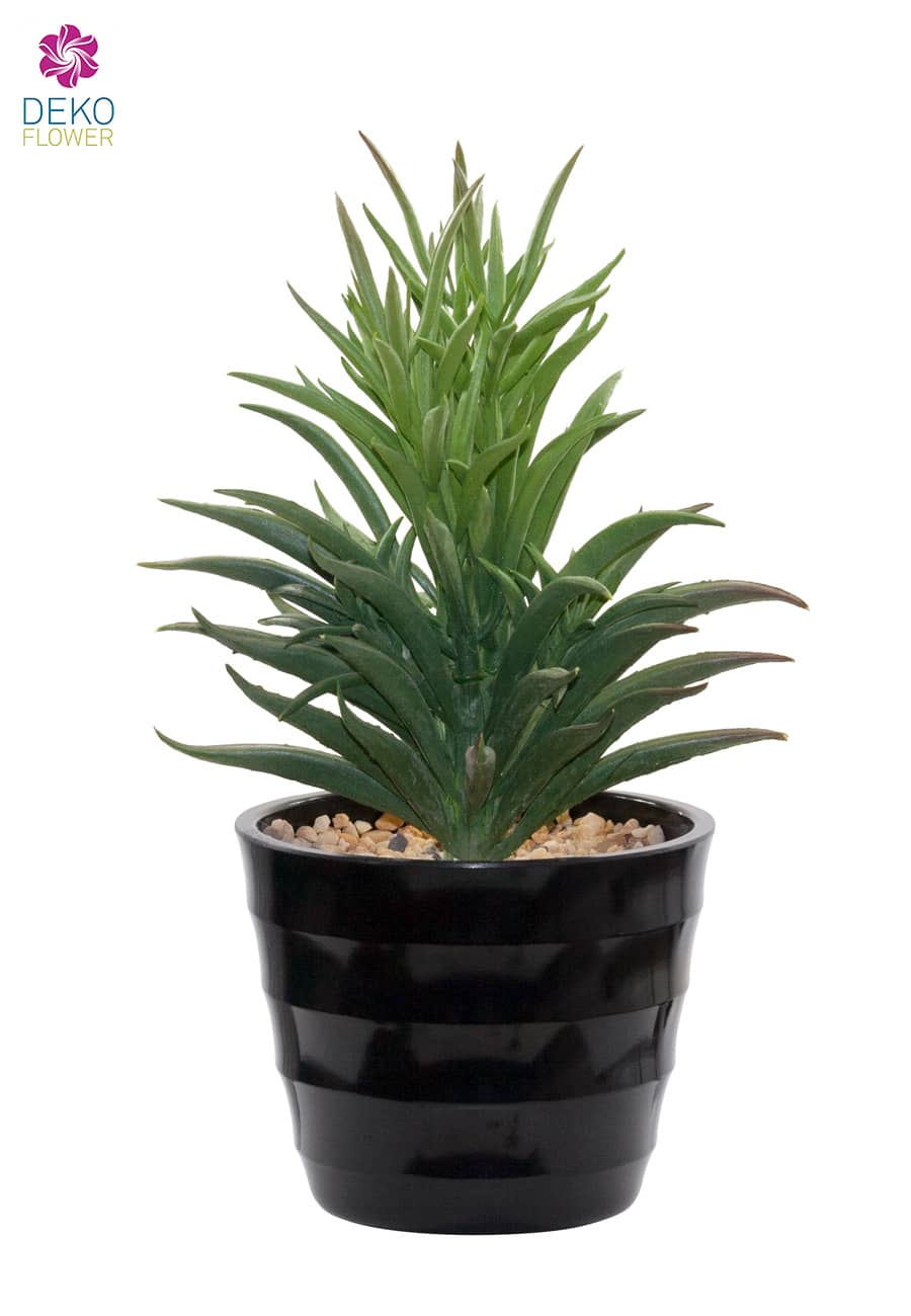 Aloe Sukkulent Kunstpflanze getopft 23 cm